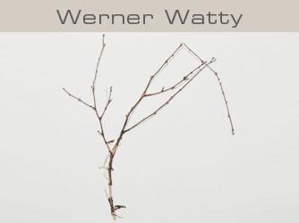 Werner Watty